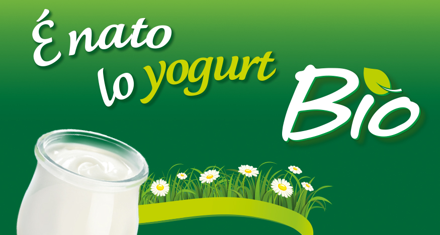news yogurt